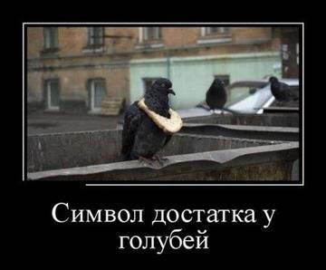 http://s3.uploads.ru/t/c8lJz.jpg