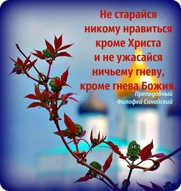 http://s3.uploads.ru/t/cBtMr.jpg
