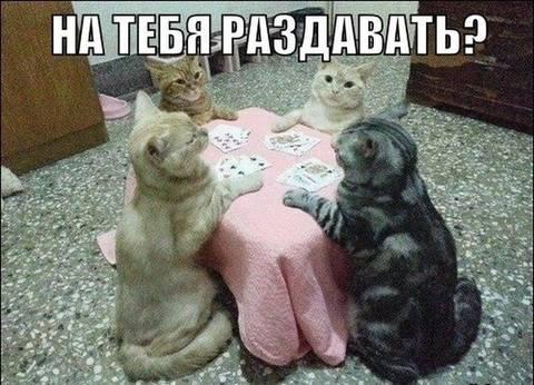 http://s3.uploads.ru/t/cSHaQ.jpg