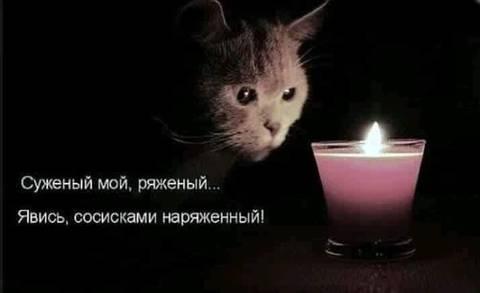 http://s3.uploads.ru/t/cUkCw.jpg