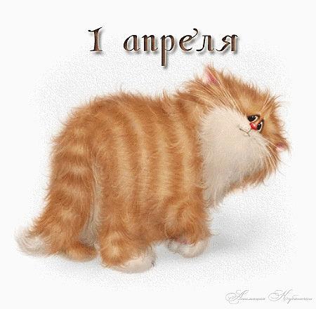 http://s3.uploads.ru/t/cdayC.jpg