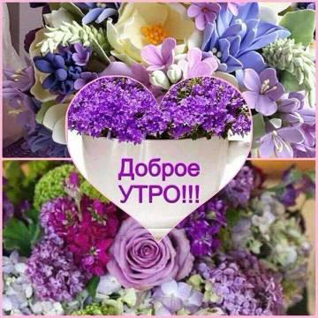 http://s3.uploads.ru/t/ce5GP.jpg