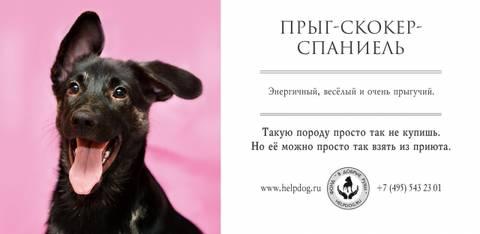 http://s3.uploads.ru/t/dJsN4.jpg