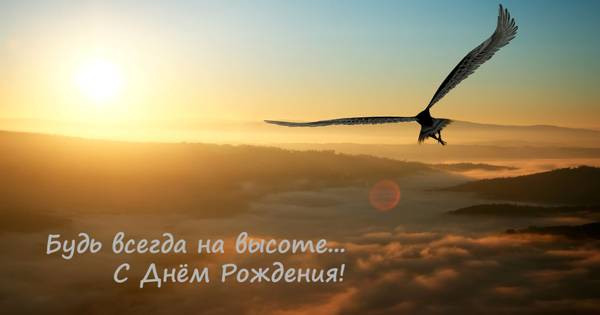 http://s3.uploads.ru/t/dWpIX.jpg