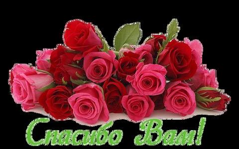 http://s3.uploads.ru/t/dro62.png