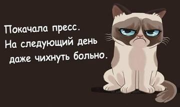 http://s3.uploads.ru/t/e0gwF.jpg