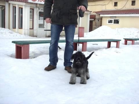 http://s3.uploads.ru/t/eHAbj.jpg