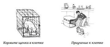 http://s3.uploads.ru/t/ekEqh.jpg