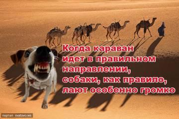 http://s3.uploads.ru/t/ep31i.jpg