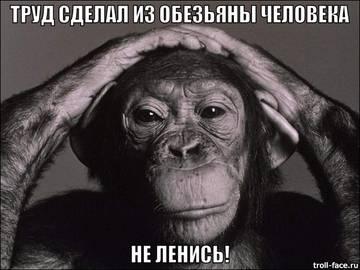 http://s3.uploads.ru/t/f4xR0.jpg