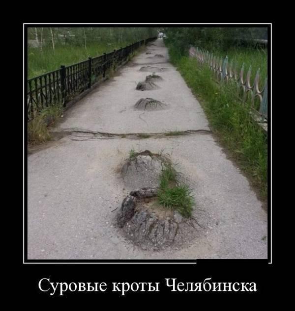 http://s3.uploads.ru/t/fINws.jpg