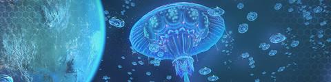 Арт-Прозрение. Бог-Медуза