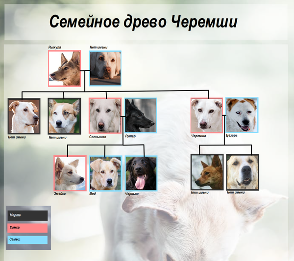 http://s3.uploads.ru/t/fYljE.png