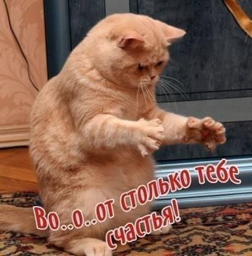 http://s3.uploads.ru/t/g2YdM.jpg