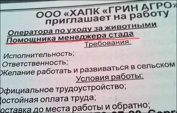 http://s3.uploads.ru/t/gCZtn.jpg
