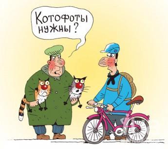 http://s3.uploads.ru/t/gXSVC.jpg