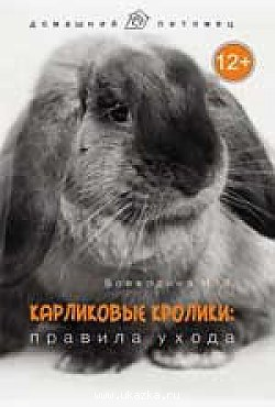 http://s3.uploads.ru/t/gfA8X.jpg