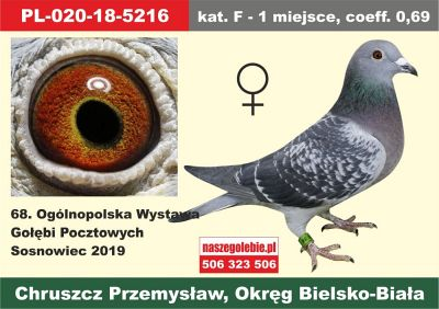 http://s3.uploads.ru/t/gfQqY.jpg
