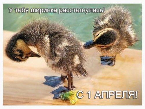 http://s3.uploads.ru/t/gpGeN.jpg