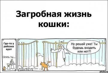 http://s3.uploads.ru/t/h3JNq.jpg