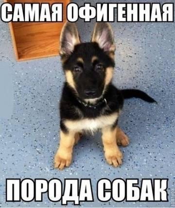 http://s3.uploads.ru/t/hCklx.jpg