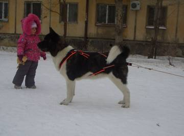 http://s3.uploads.ru/t/hDMOA.jpg