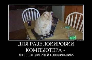 http://s3.uploads.ru/t/hKrXQ.jpg