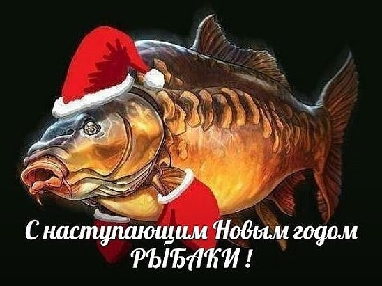 http://s3.uploads.ru/t/hMVKs.jpg