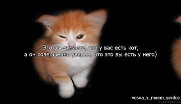 http://s3.uploads.ru/t/hXSVN.jpg
