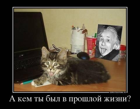 http://s3.uploads.ru/t/hYZTy.jpg