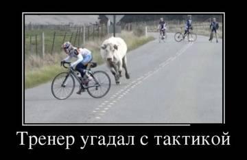http://s3.uploads.ru/t/hpNCq.jpg