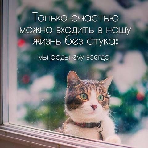 http://s3.uploads.ru/t/i6ksp.jpg