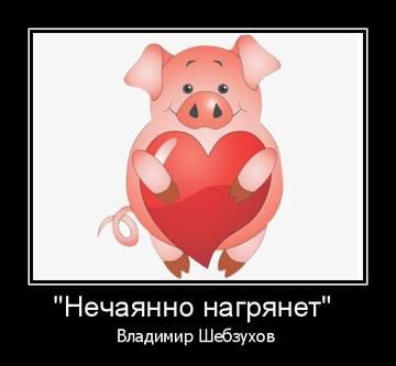 http://s3.uploads.ru/t/iWSRy.jpg