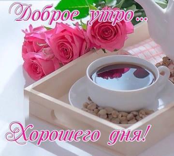 http://s3.uploads.ru/t/ioBbY.jpg