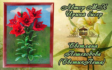http://s3.uploads.ru/t/j2RN6.jpg