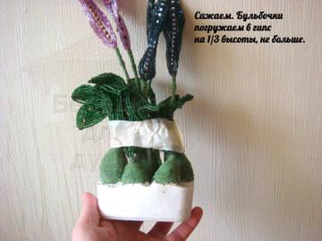 http://s3.uploads.ru/t/j71tL.jpg