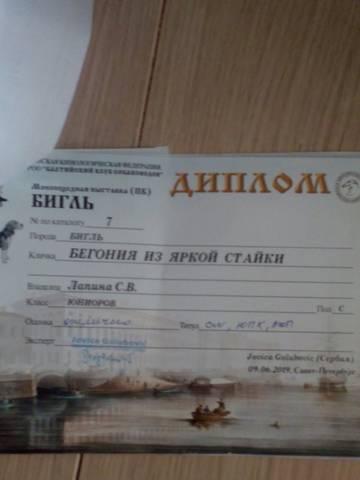 http://s3.uploads.ru/t/jUB91.jpg