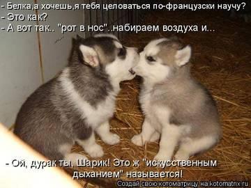 http://s3.uploads.ru/t/jzUOl.jpg