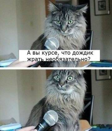 http://s3.uploads.ru/t/k7R1z.jpg