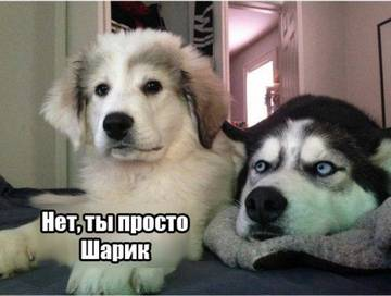 http://s3.uploads.ru/t/kNJI9.jpg