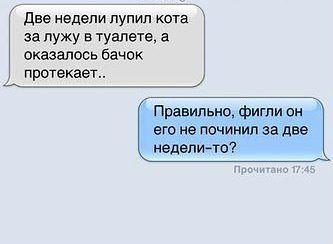 http://s3.uploads.ru/t/kZQrN.jpg