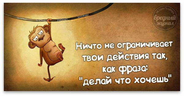 http://s3.uploads.ru/t/kev3V.jpg