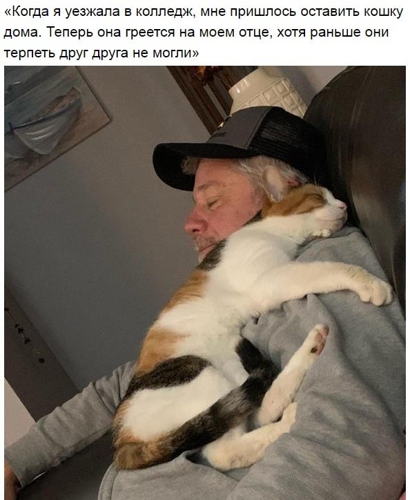 http://s3.uploads.ru/t/kg7sV.jpg