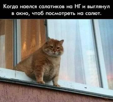 http://s3.uploads.ru/t/ki6CG.jpg