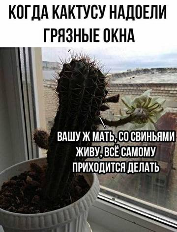 http://s3.uploads.ru/t/km5TC.jpg