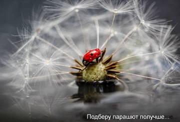 http://s3.uploads.ru/t/koHyY.jpg