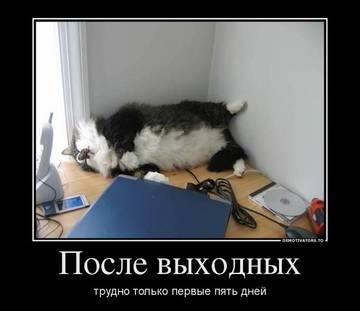 http://s3.uploads.ru/t/l6Ry2.jpg
