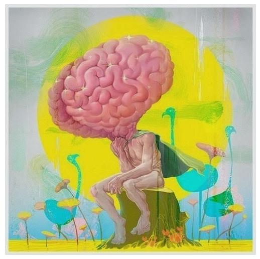 Материалы по феноменам мозга и глубинной, долгосрочной памяти