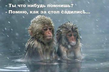 http://s3.uploads.ru/t/lg7KH.jpg