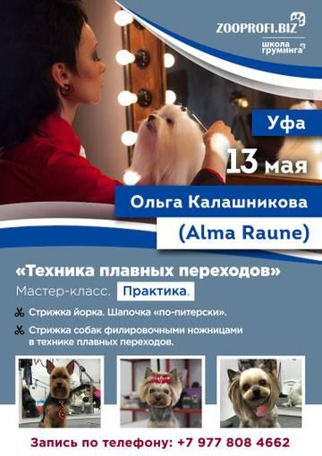 http://s3.uploads.ru/t/m76kv.jpg